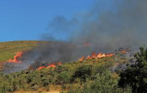 Kάηκε ζωντανός καίγοντας χόρτα στον Ωρωπό