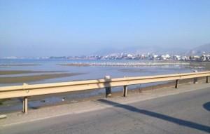 ALERT: Απαγορεύεται η κολύμβηση στη Λιανή Αμμο Χαλκίδας